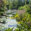 モネの庭マルモッタンへ