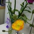 会議室に花