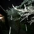 蜘蛛の巣に、氷柱(つらら)