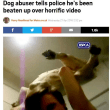 続 猫虐待犯の罰が軽すぎる(怒