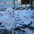 雪だるま2017