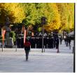 靖国神社に参拝する、防大生 画像追加で更新