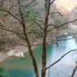 《秋田県》抱返り渓谷(2017年11月)