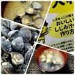 漁獲量日本一の宍道湖産☆シジミ2キロ☆島根県
