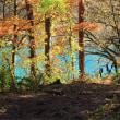 弁天沼の秋