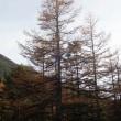 10/22 蓼科山(2531m)