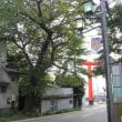 筑波山に新店舗計画。