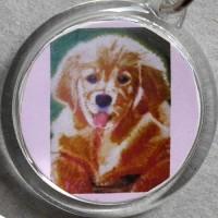 こころ燃える 「 maruko の犬 」