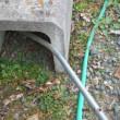 灌水・点検・残った芋掘り・エンドウ棚仕上げ