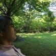 緑の谷津干潟公園
