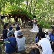 町内外から多くの来場者 森の芸術を満-白老・TOBIU CAMP