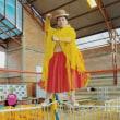平等を求め戦う「チョリータ」、ボリビアの女子プロレス 写真23点