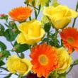 生花で色のレッスン♪