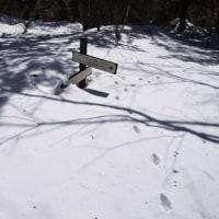 今年も雪の舟山へ登ってきました