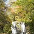 17年10/18~御嶽山~滝巡り~秋~②