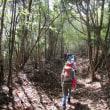 ⑫ 木の宗山登山 : とある光景