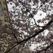 立川志の輔 富山テレビ放送開局50周年記念「立川志の輔独演会」@富山県民会館