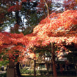 京都の紅葉~真如堂(真正極楽寺)