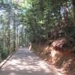 城山登山道で岩国城へ