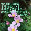 9/30 臨時休業のお知らせ