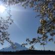 富士山を見に行こう!   ② 道の駅