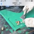 【店頭販売フォークリフト整備2】古いシールを簡単に剥がす方法を公開!!