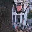 #329 -'17.     東京国立博物館のお庭を中心に