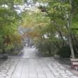 高野山は雨の日もいい。