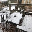 今日は雪が積もったり、ご質問におこたえしたり。