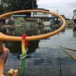 武蔵の池 へら ブラボー! 久しぶりの箱釣りも楽し^^v