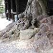 石清尾八幡宮を訪ねる(香川の神社109――ちょっと侵入編)