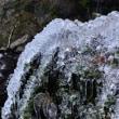 長谷渓谷 雪景色