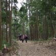 戌年の山を探して。茨木市の鉢伏山に里山ハイキングをしました。