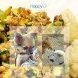 挽肉と卵のコラボ的な(*^^*)