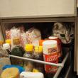 ミルキー、キッチンパラダイス。