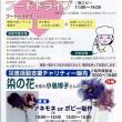 「染の花」チャリティー IN 「ふれあい広場」 11.25