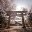 奈良のお花見 天満のお花見