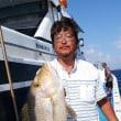沖縄県泳がせ釣り動画、真生丸