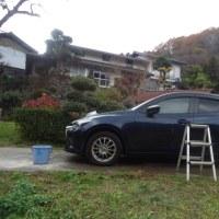 星占いで洗車