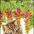色鉛筆画442 (フサスグリと子猫)