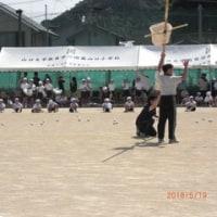 孫小学校の運動会