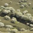 羊の群れに負けない 人の群れ ( 笑 ) 竜ヶ岳 vol. 2