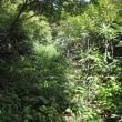 9月15日 東光山と日住山