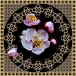 北方円鏡寺の弘法さんで・・・