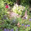 春の庭で遊ぶ