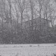 一夜で 雪景色に 変わった。
