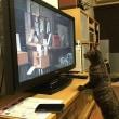 岩合光昭さんの「世界ネコ歩き」を見入るサバちん
