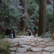 熊野古道 那智の滝 2