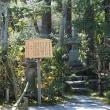 第184回古都旅歩き 平等院、宇治上神社