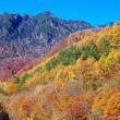 November,2017 秩父多摩甲斐国立公園 西沢渓谷